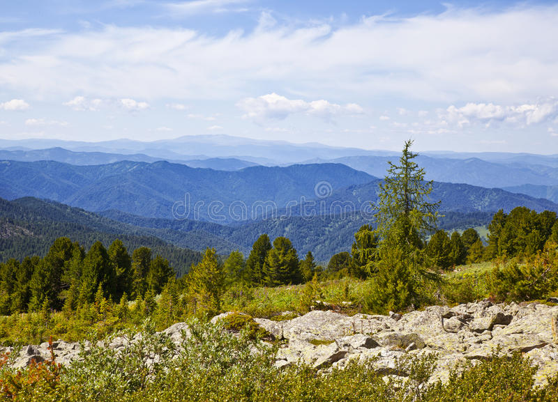 Landscapes Of Altai Mountains royalty free stock photos