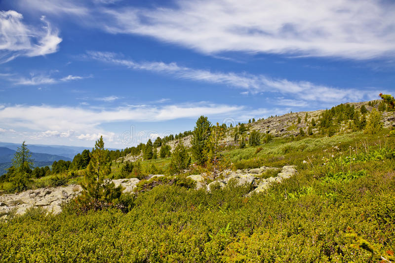 Landscapes Of Altai Mountains stock images