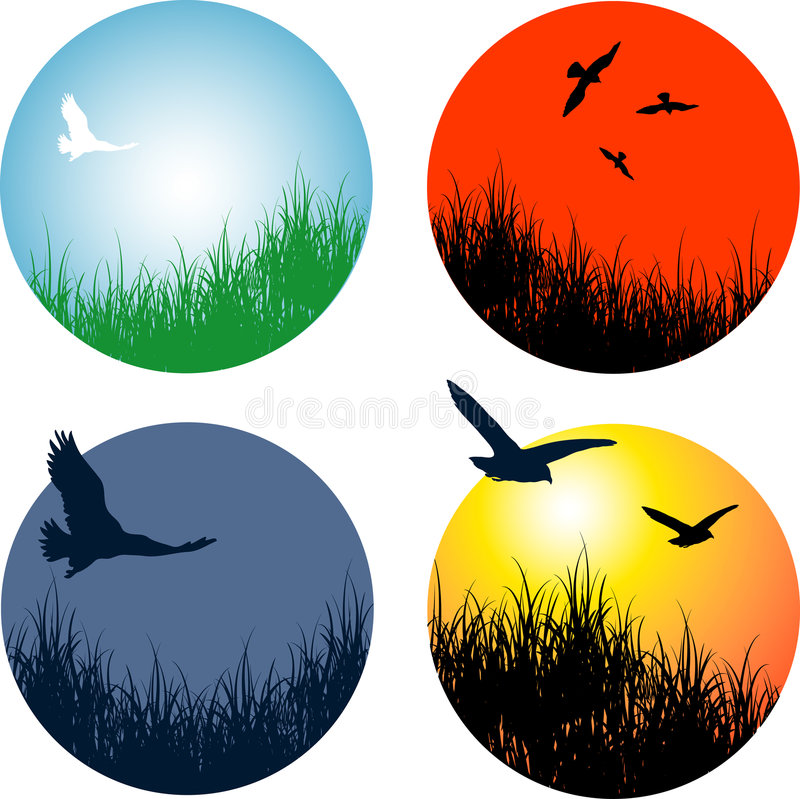 Landscapes with birds stock illustration