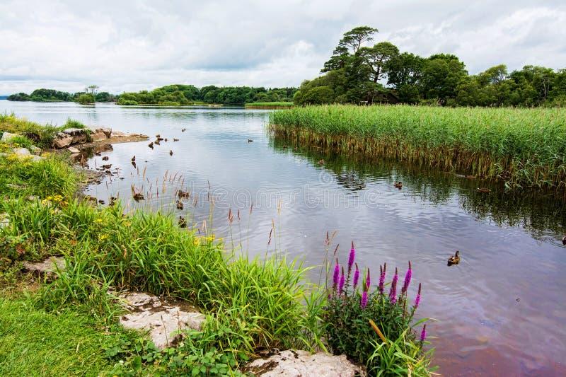 Landscapes of Ireland. Killarney national park stock photos