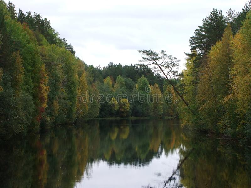 Autumn mirror stock image
