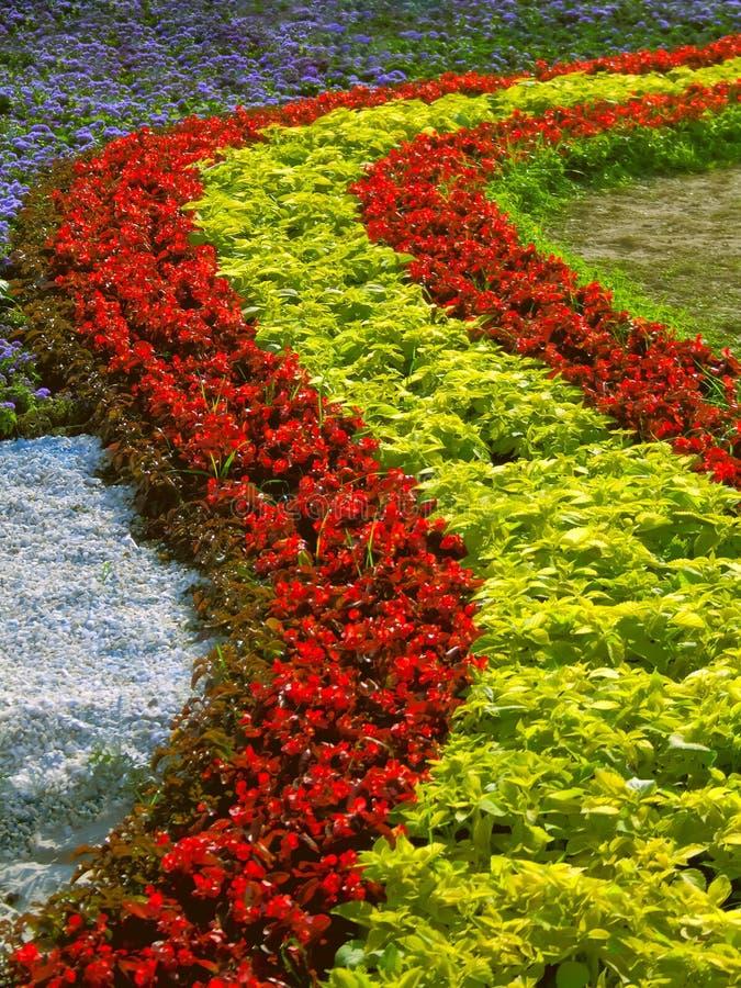 Landscaping предпосылка стоковое фото