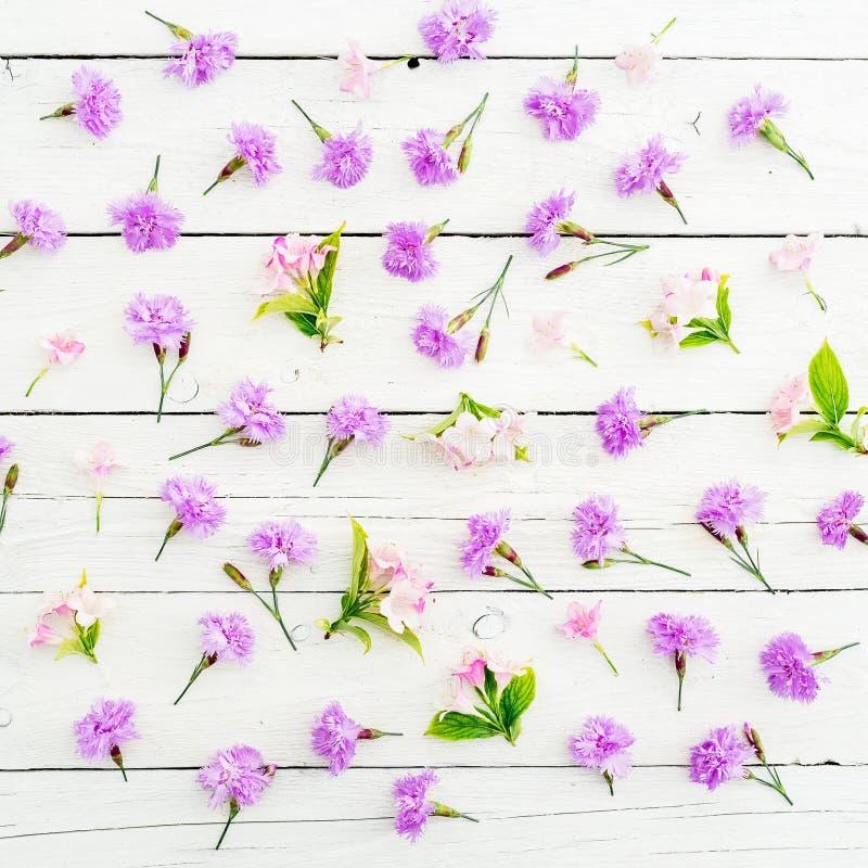 Цветочный узор розовых цветков и листьев на белой предпосылке o стоковое фото rf