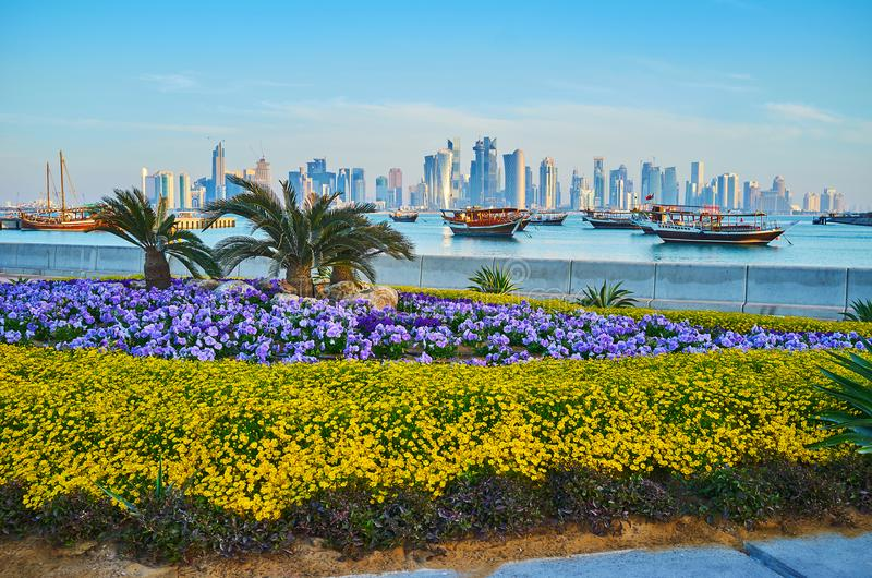 Landscaping in Doha, Qatar. Corniche promenade is perfectly decorated with beautiful flower beds, tiny palms and trimmed bushes, Doha, Qatar stock image
