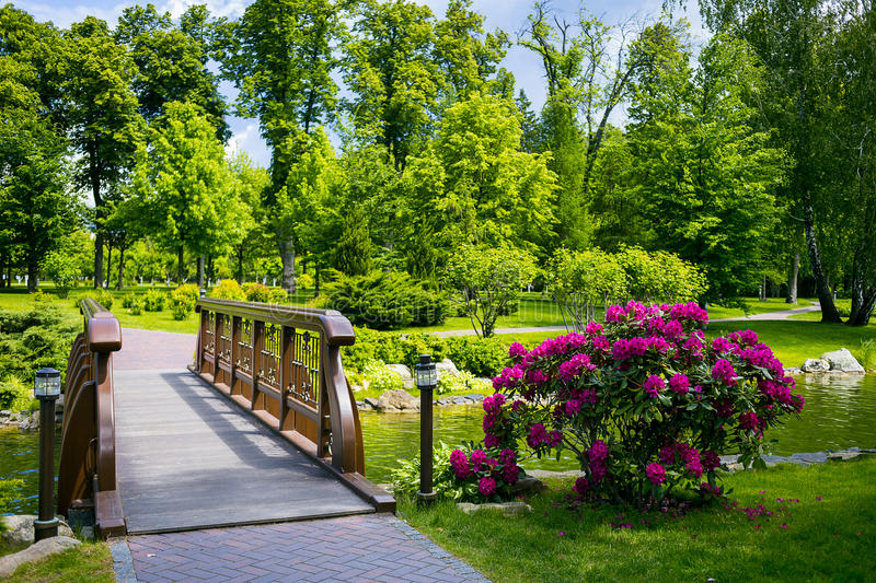 Landscaping in the garden. The path in the garden.Beautiful back stock images
