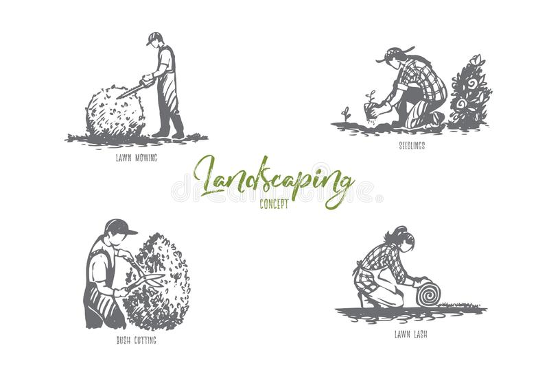 Landscaping- lawn mowing, seedlings, lawn lash, bush cutting vector concept set royalty free illustration
