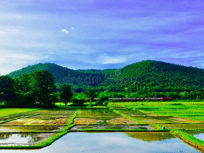 landschaft lizenzfreies stockfoto