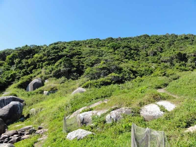 landschaft lizenzfreies stockbild