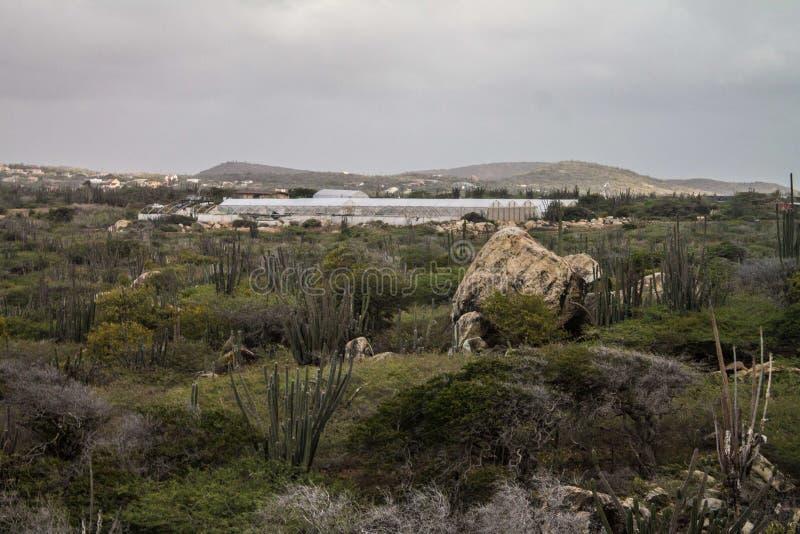 Landschaft Aruba stockfoto