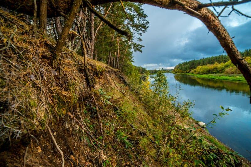 Landschaft bei Sonnenuntergang und Wald und Fluss lizenzfreie stockfotos