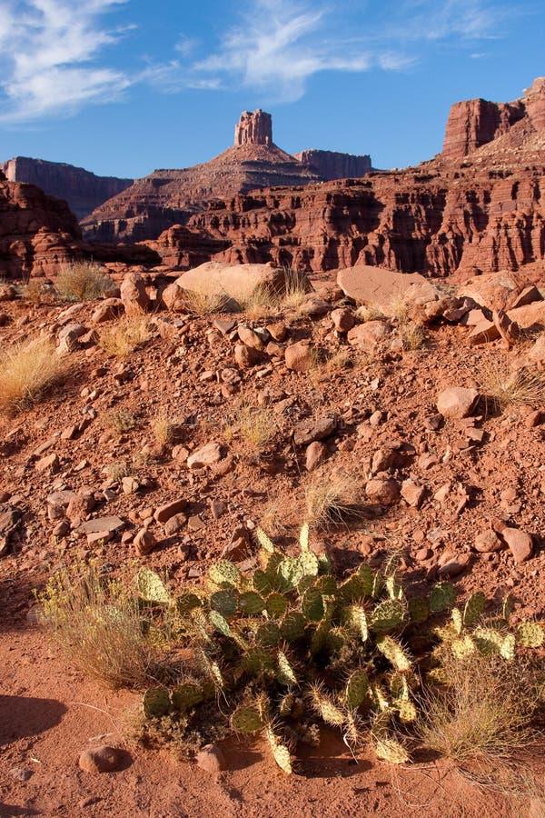Landschaft Canyonlands des Nationalparks stockfotografie