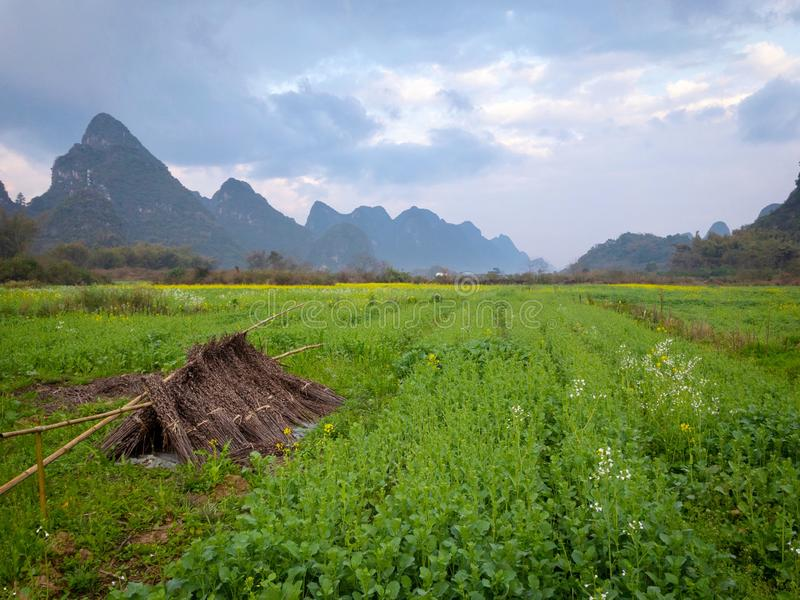 Landschaft Chinas Guilin Yangshuo stockfoto