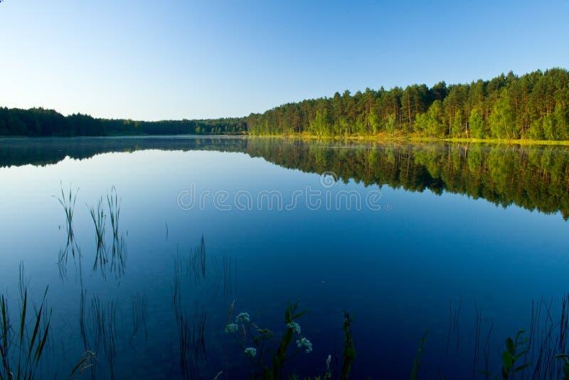 Landschaft in dem See lizenzfreie stockfotos