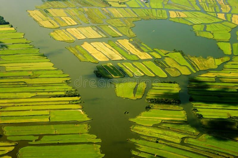 Landschaft in den Niederlanden stockfoto