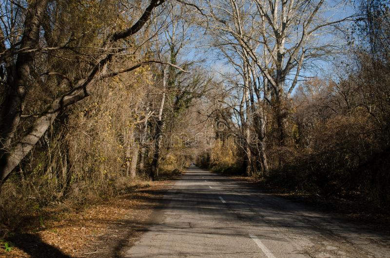 Landschaft der Asphaltstraße weg durchlaufend in die Gebirgspässe die Bäume, die Dörfer und die Waldplätze oder ländliche Orte vo stockbilder