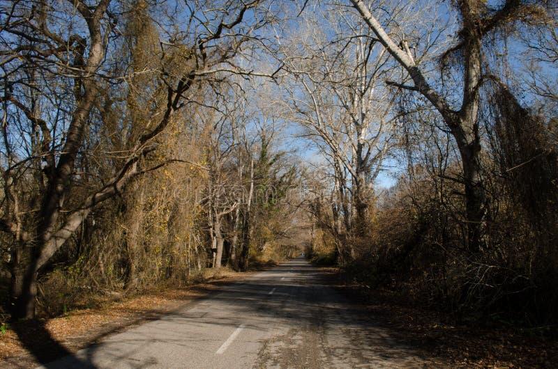 Landschaft der Asphaltstraße weg durchlaufend in die Gebirgspässe die Bäume, die Dörfer und die Waldplätze oder ländliche Orte vo lizenzfreie stockbilder