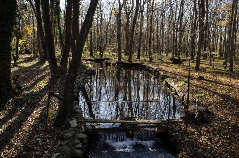Landschaft der Asphaltstraße weg durchlaufend in die Gebirgspässe die Bäume, die Dörfer und die Waldplätze oder ländliche Orte vo lizenzfreies stockbild