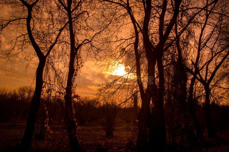 Landschaft der Asphaltstraße weg durchlaufend in die Gebirgspässe die Bäume, die Dörfer und die Waldplätze oder ländliche Orte vo stockfotografie