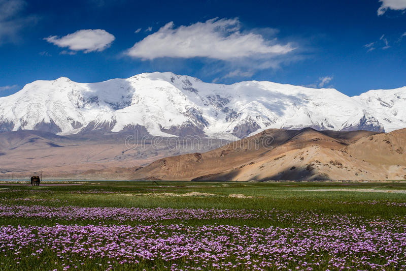 Landschaft der Betäubung Karakorum lizenzfreies stockbild