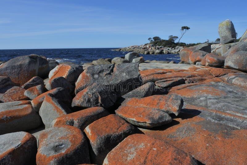 Landschaft der Bucht der Feuer Tasmanien Australien lizenzfreie stockbilder