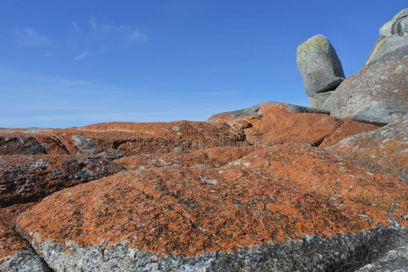 Landschaft der Bucht der Feuer Tasmanien Australien stockbilder