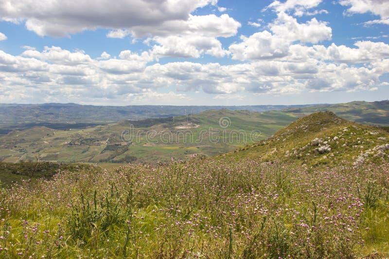 Landschaft der grünen Natur im Frühjahr, ländliche Ansicht in Hintergrund mit szenischem Himmel stockbilder