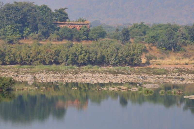 Landschaft der panna Tigerreserve, Madhya Pradesh, Indien lizenzfreie stockfotos