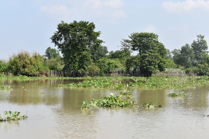 Landschaft der schönen Landschaft in Saigon-Fluss in Ho Chi Minh City, Vietnam, Asien lizenzfreie stockfotografie