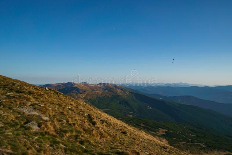 Landschaft der ukrainischen Karpatenberge, Chornohora stockfotos