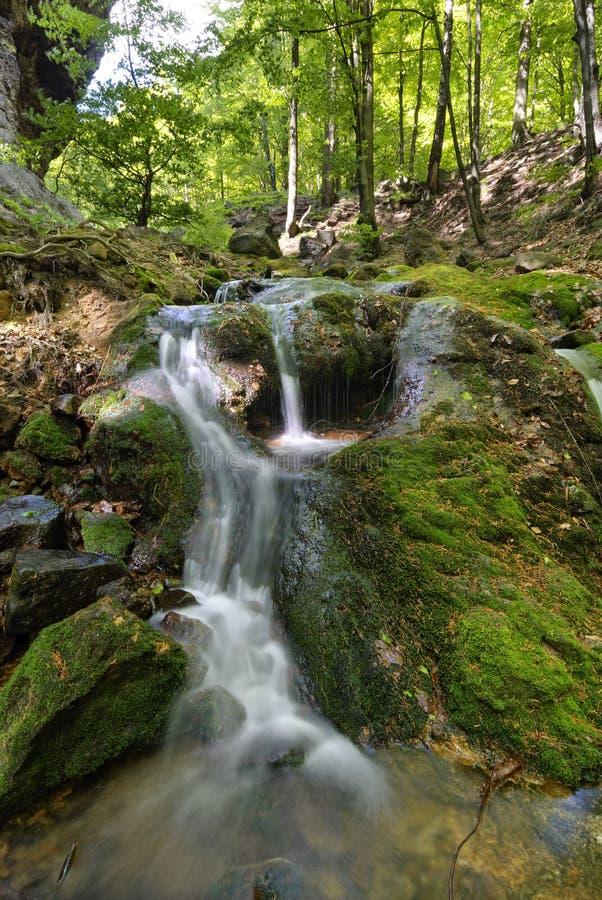 Landschaft der Wasserkaskaden eines Gebirgsstromes Der Fluss fließt die moosigen Felsen durch, die durch einen schönen Wald umgeb lizenzfreie stockfotos