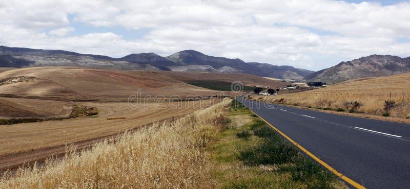 Landschaft der Weizenfelder stockfotografie