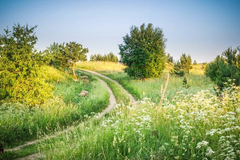 Landschaft der Wiese und der Straße stockfotografie
