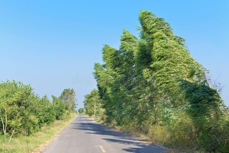 Landschaft der windigen Straße lizenzfreie stockbilder