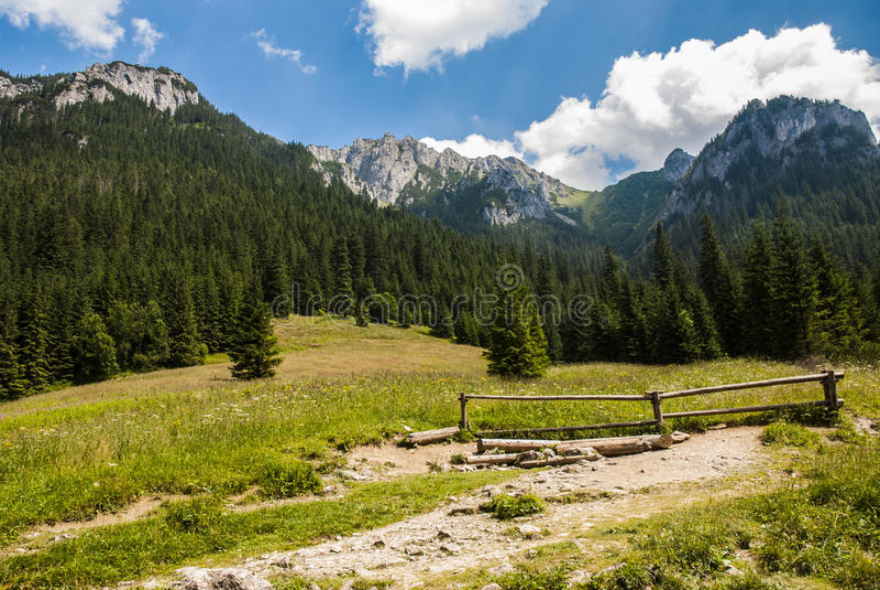 Landschaft des Berges lizenzfreies stockbild