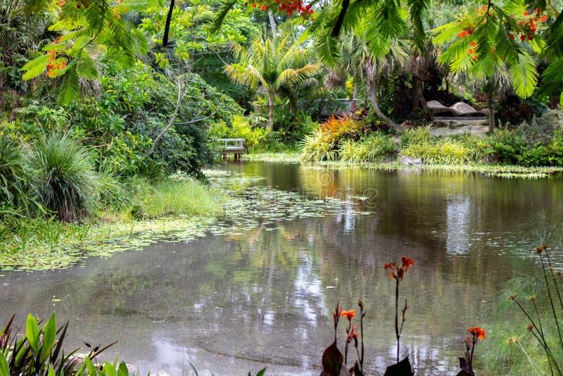 Landschaft des botanischen Gartens in Florida lizenzfreie stockfotos