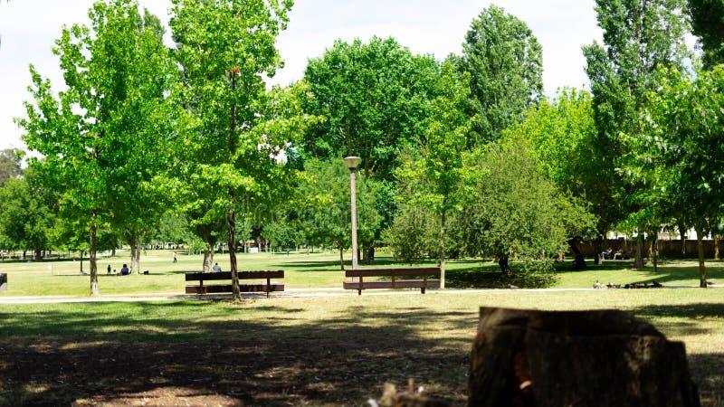 Landschaft eines Gartens lizenzfreie stockfotografie