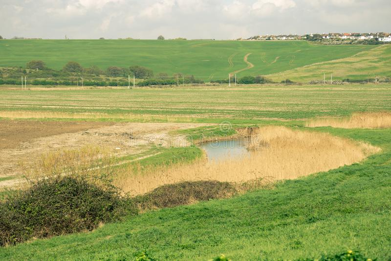 Landschaft Essex stockbilder