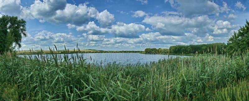 Landschaft, Fluss, Waldpanorama stockfotografie