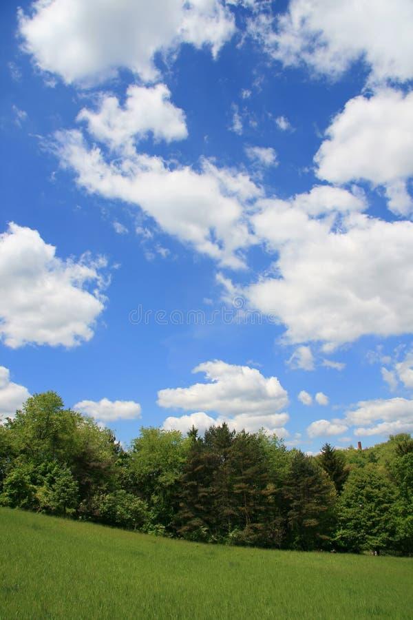 Landschaft am Frühling lizenzfreies stockfoto