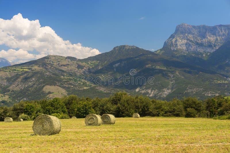 Landschaft in Haute Provence lizenzfreie stockfotos