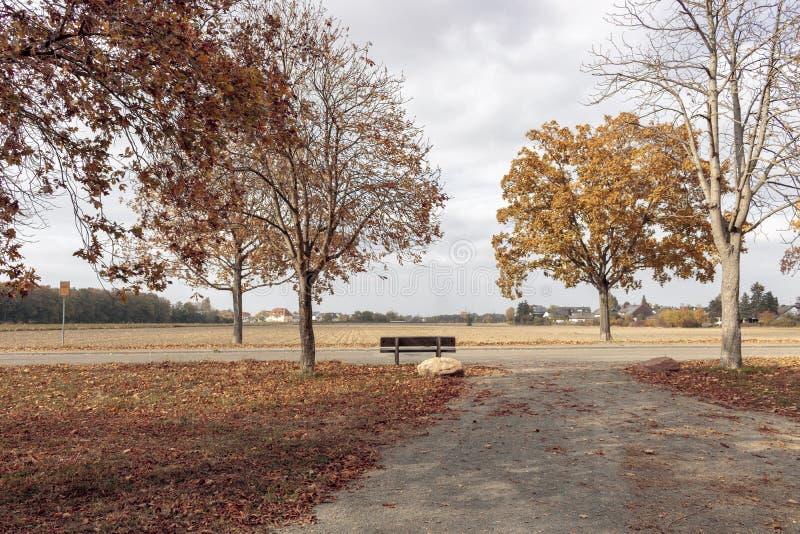 Landschaft - Herbst in Deutschland Frankenthal lizenzfreie stockfotografie