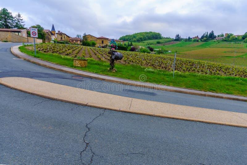 Landschaft im Beaujolais, mit einer Vogelscheuche und der Dorf Wässerung lizenzfreie stockfotos