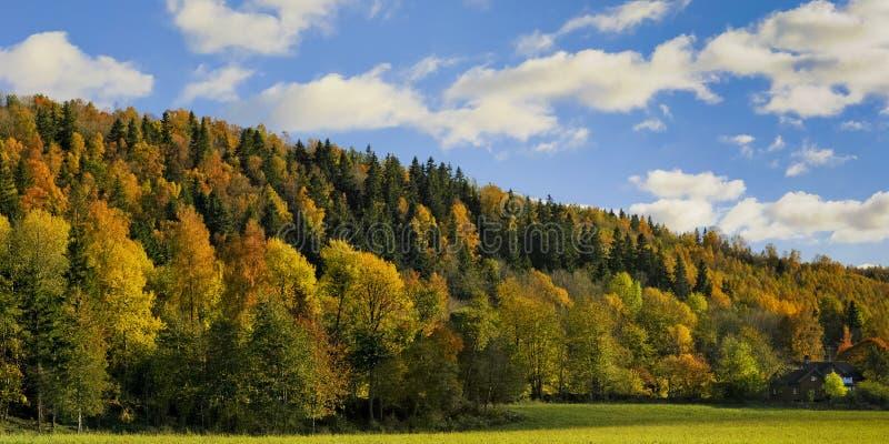 Landschaft im Herbstwaldtal und -haus. stockbilder