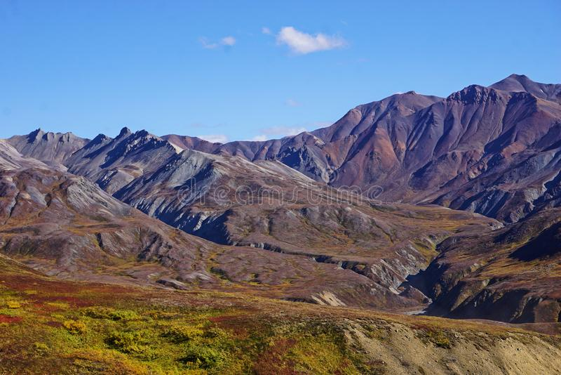Landschaft im Nationalpark Denali in Alaska lizenzfreie stockfotografie