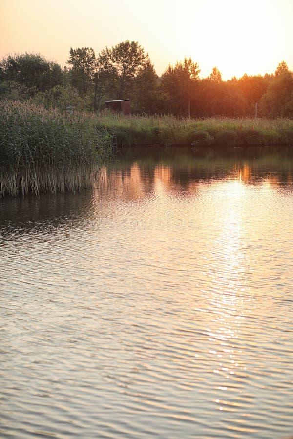 Landschaft ist Sommer Grüne Bäume und Gras in einer Landschaft landen lizenzfreie stockfotos