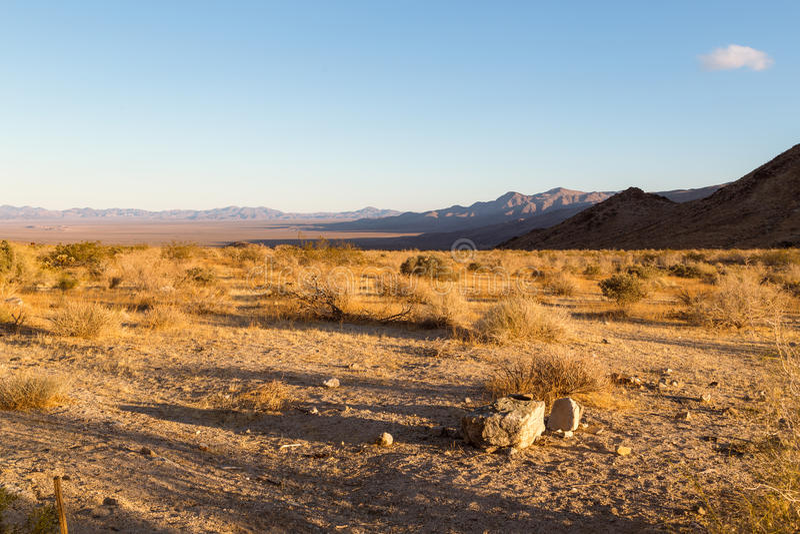 Landschaft in Joshua Tree lizenzfreies stockfoto