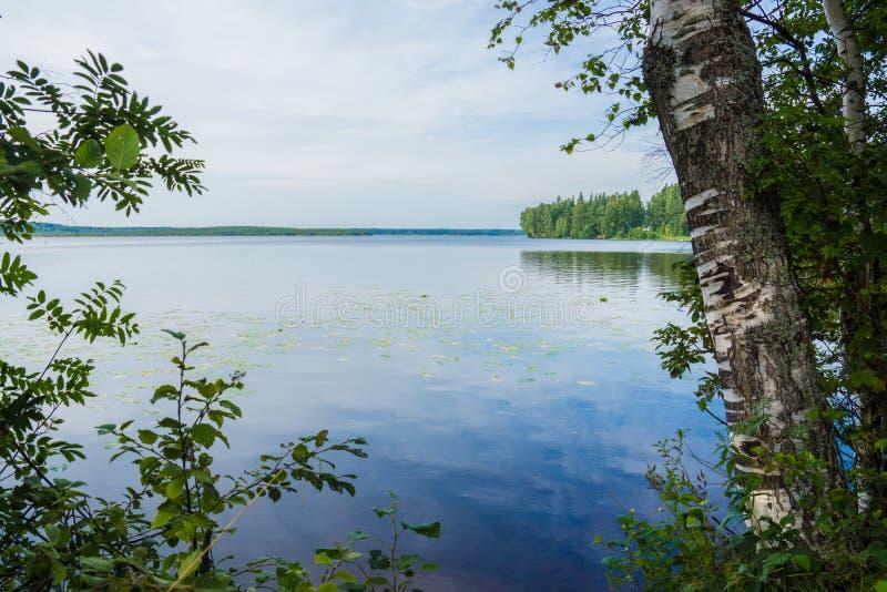 Landschaft in Kavgolovo lizenzfreies stockfoto