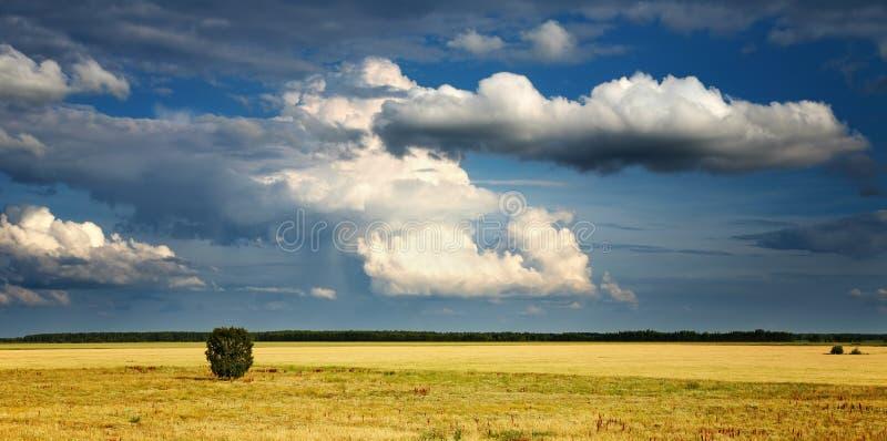 Landschaft mit bewölktem Himmel stockbilder