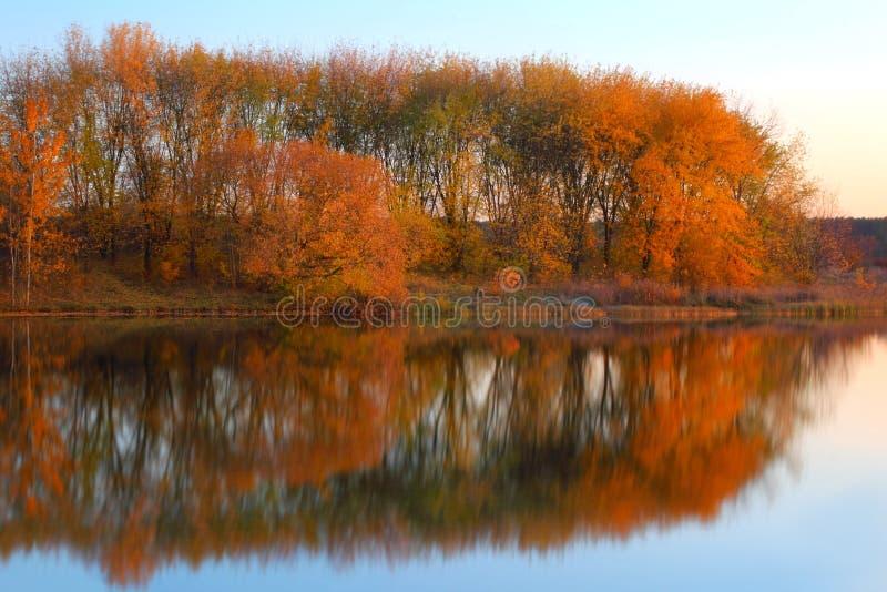Landschaft mit den Bäumen, die in einem See sich reflektieren stockfotografie