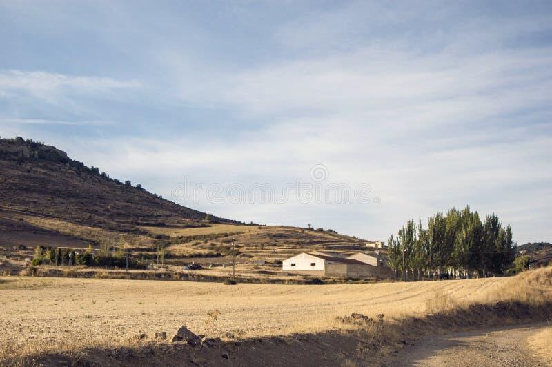 Landschaft mit Ernten im Vordergrund stockbilder